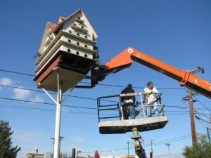 birdhouse (13)